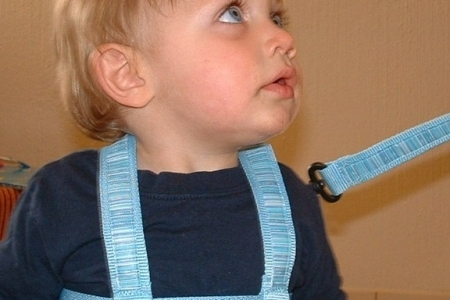 Child Safety Harness - Blue  picture 1880
